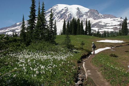 Mt Rainier - Lakes Trail