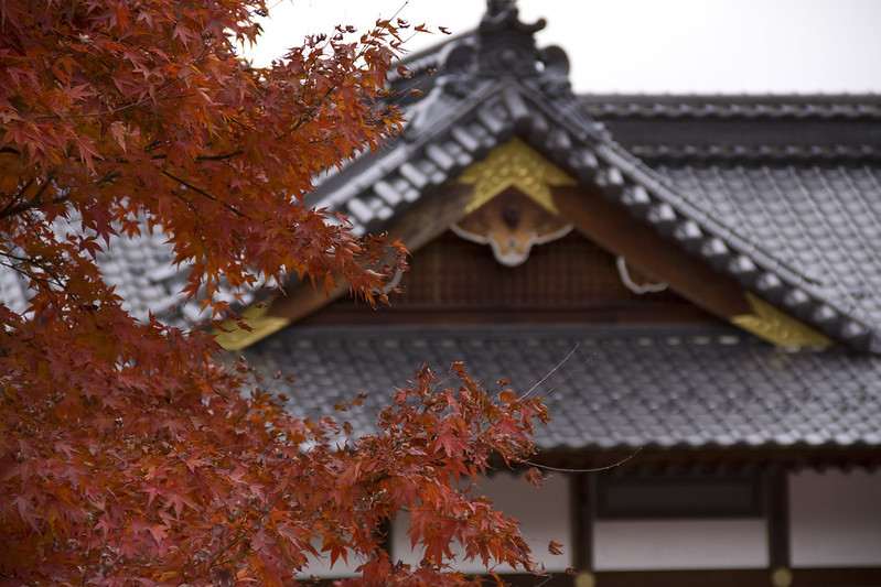 Autumn Paints Its Mood At A Zen Temple