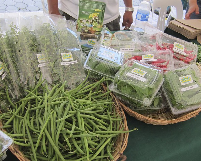 Costales' Certified Organic Farm produce @ Morning Mercato