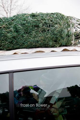 20121130-advent1-53.jpg