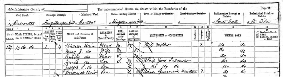Emily Hair 1891 census