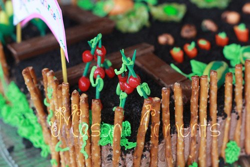 garden-cake-tomatoes