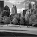 A view of Piedmont Park - Midtown Atlanta by Ken B Gray