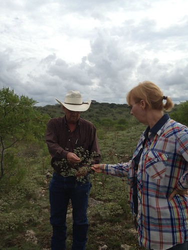 Pat Maples works with Natural Resources Conservation Service District Conservationist Mitchell Schroeder to identify new vegetation.