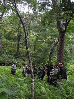 金恆鑣說:「台灣的森林在自然環境之水土保持、水文調節與碳吸存等功能上所帶來的服務與價值,遠遠超過其所生產之木材的價值。」