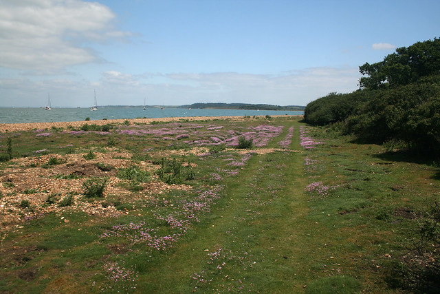 Newtown, Isle of Wight