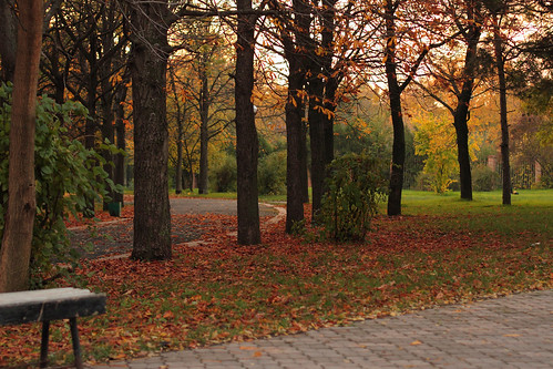 park autumn canonef50mmf14usm tiraspol canoneos550d