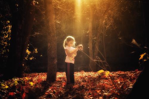 [フリー画像素材] 人物, 子供 - 女の子, 人物 - 森林, アメリカ人 ID:201211101200