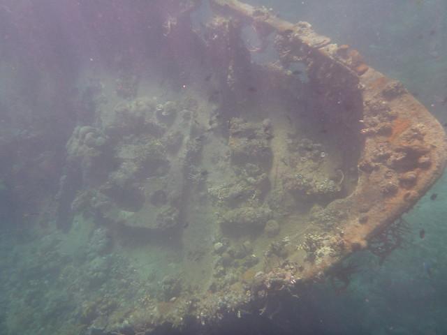 從海面上就隱約可以看到這個龐然大物在海底製造出的黑影
