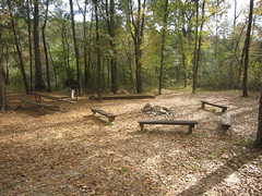 32. The Boy Scout Area