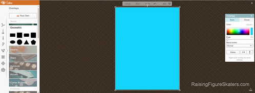 Selecting a Background Color on PicMonkey