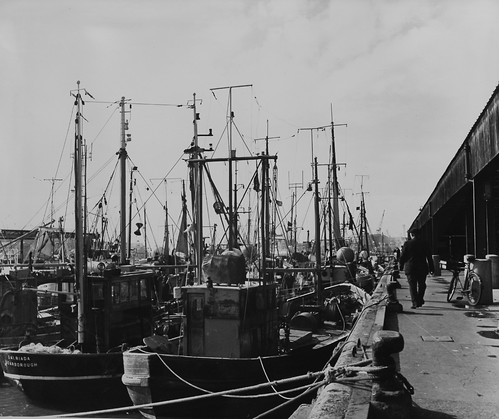 Undated photo of Norrth Shields Fish Quay