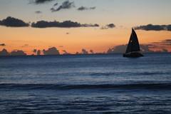 Scenic sailboat at sunset