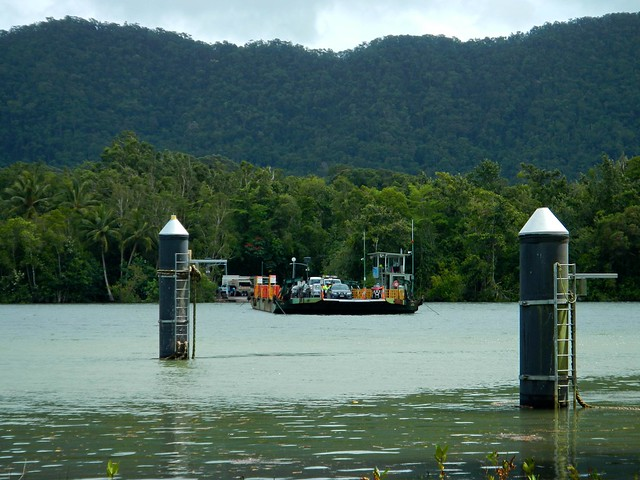 Ferry, Daintree River