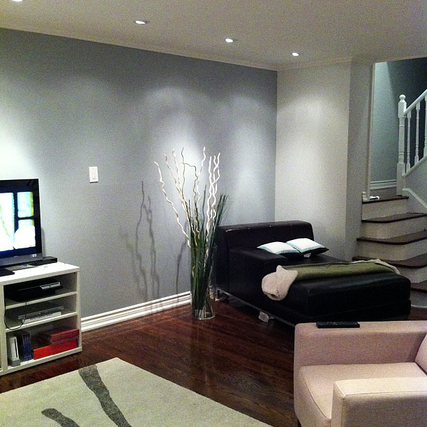 Living Room Take 3 Feature Wall Redone Darker Pots Angled To Brighten It Finallyhappy