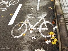 Carril bici donostia