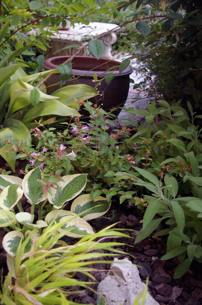 Jardineros en acción - Jardín en la Meseta