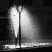 L'ombra del lampione