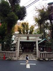 朝散歩 - 神社へ (2012/11/26)