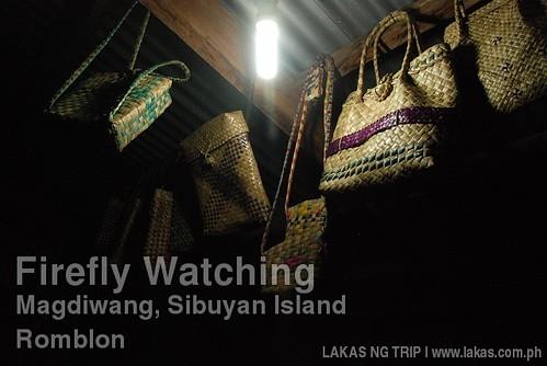 Firefly Watching in Magdiwang, Sibuyan Island, Romblon