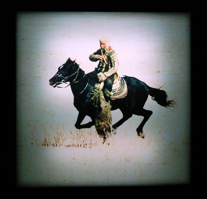 Steppe Rider Buzkashi