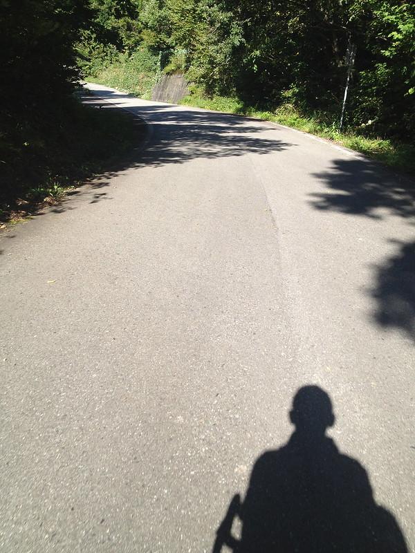 九頭竜湖へ向かう道 その3