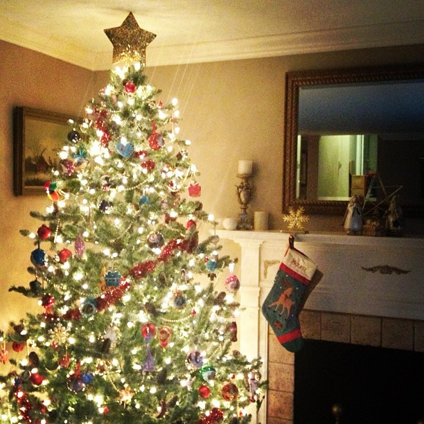 Our tree is up! Is yours? Or do you wait until closer to Christmas?