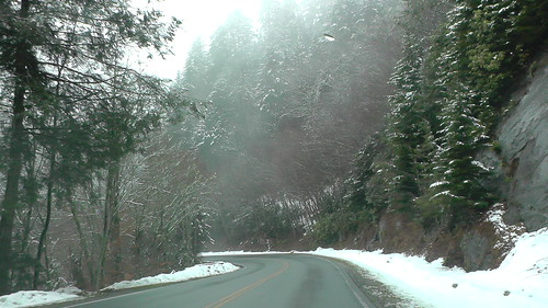 S1120009_Snow_on_Newfound_Gap_Road