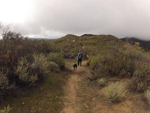 Kennedy Ridge