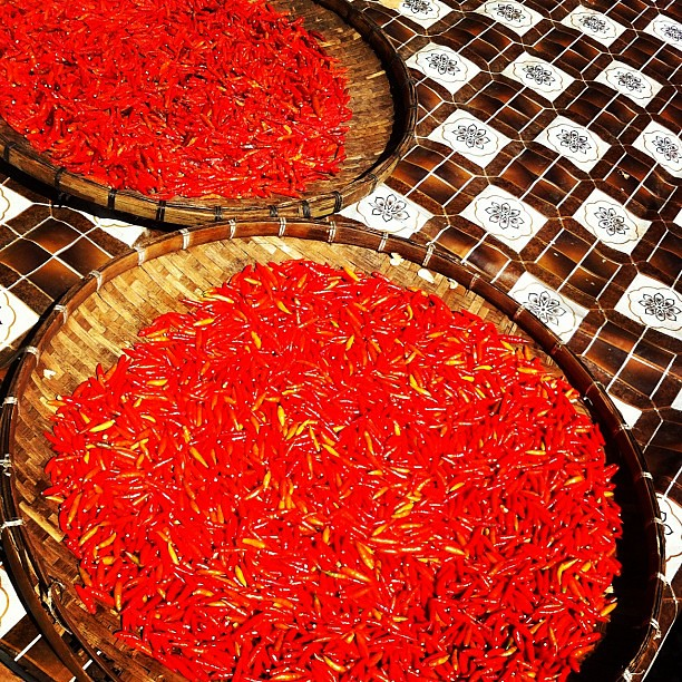 Chiles in laos