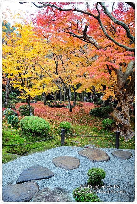 2012-11-23 11.14.16.jpg