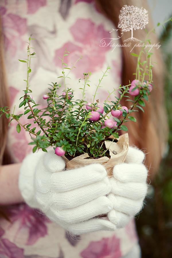 Pink ♥