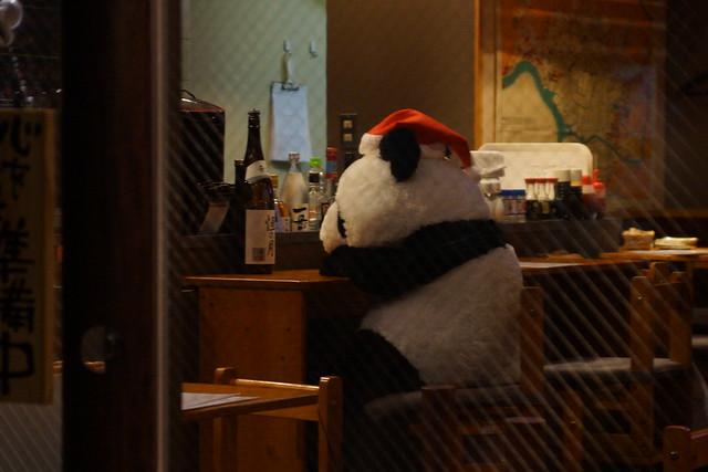 パンダさん飲み過ぎですよ