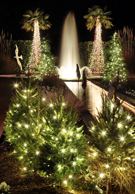 Blog ben goff photography - Daniel stowe botanical garden christmas ...