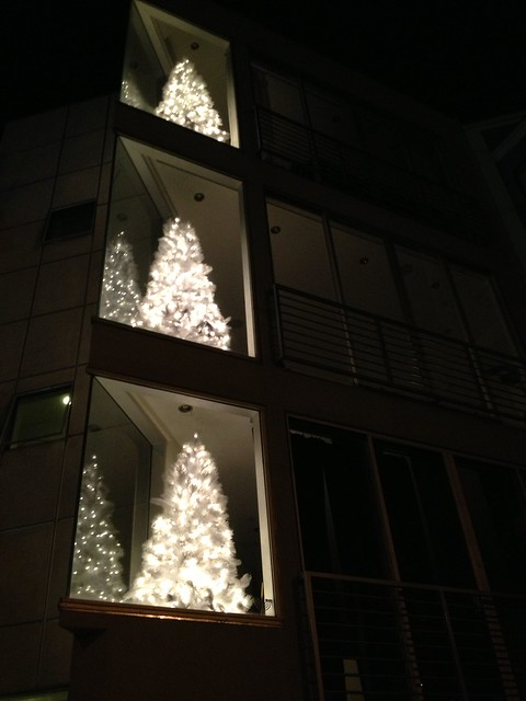 White Christmas trees, Collingwood Street