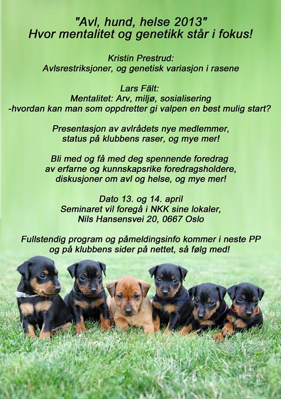 """Informasjon om NPK seminaret """"Avl, hund, helse 2013"""" 8282218878_52158de408_b"""