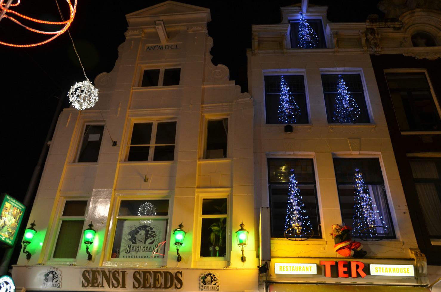 amsterdam amsterdam light festival 2012 sensi seeds pjot flickr photo sharing. Black Bedroom Furniture Sets. Home Design Ideas