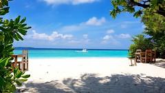 #sonevafushi #maldives