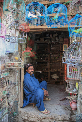 peshawar pakistan asia bird birds colour market town city oldcity composition man people world traveler documentary photography work explore canon culture souk portrait