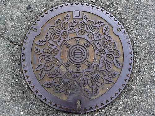 Misumi town Yamaguchi pref, manhole cover (山口県三隅町のマンホール)