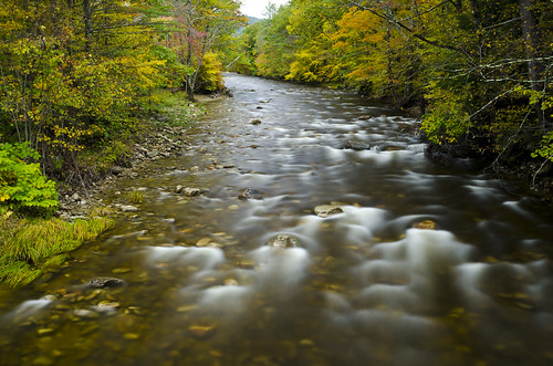trees fall nature leaves yellow river landscape stream vermont leebigstopper
