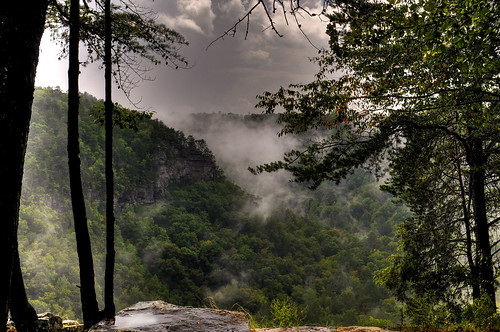 fog littlerivercanyon fortpaynealabama littlerivernationalpreserve crowpointoverlook