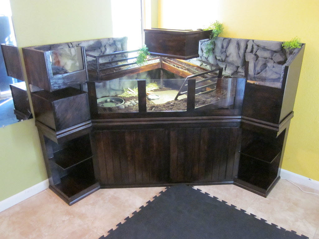 Share Your Tort Table Indoor Enclosure Pix Page 2