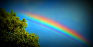 Lomo rainbow