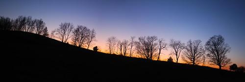 november sunset panorama ny silhouette photomerge treeline burgerhill rhinebeck 2012 potdnovember17th2012