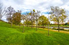 Parque Juan Carlos I - LIV