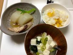 とらちゃんの晩御飯