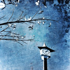 Branches and Clock