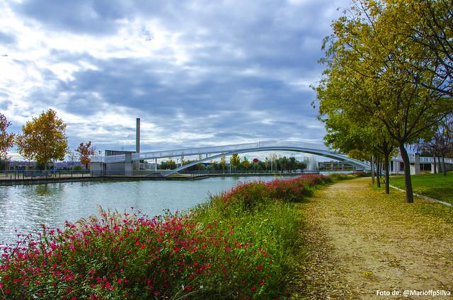 Foto Parque Juan Carlos I - LXII