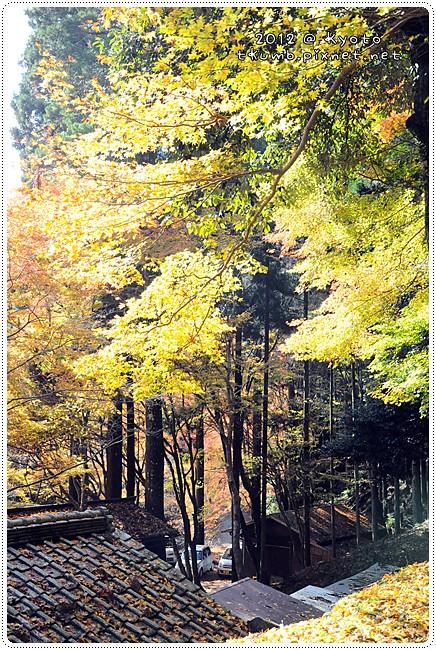 神護寺 (9).jpg